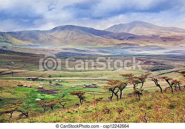 savanne, tansania, afrikas, landschaftsbild - csp12242664