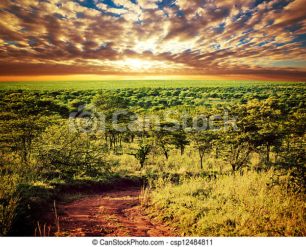 Serengeti savanna Landschaft in tanzania, africa. - csp12484811