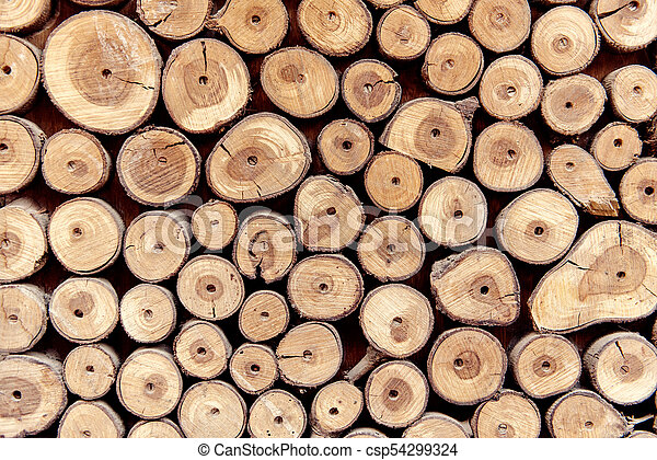 Sawed wood background. Decor of wall - csp54299324