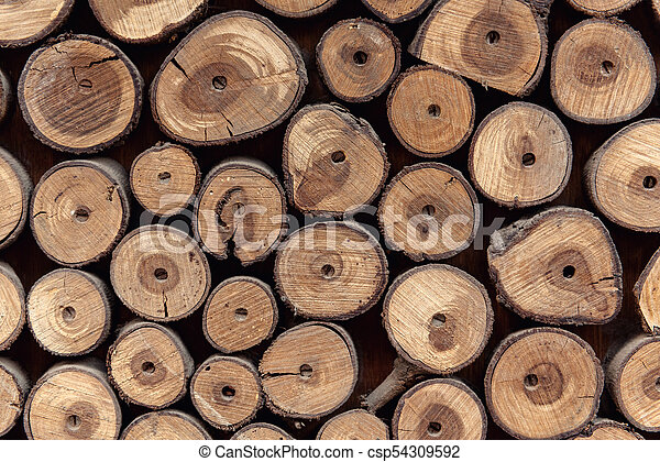 Sawed wood background. Decor of wall - csp54309592