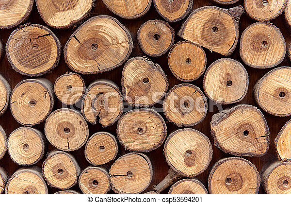 Sawed wood background. Decor of wall. - csp53594201