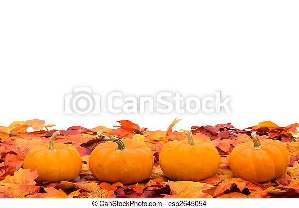 scène, automne - csp2645054