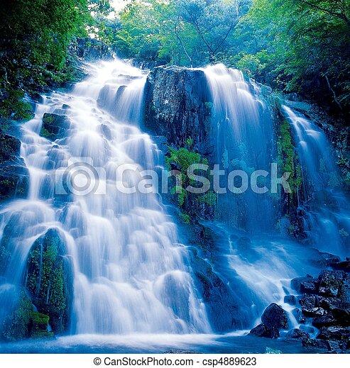 scène, nature - csp4889623