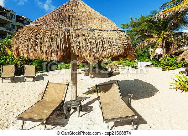 scène plage - csp21568874