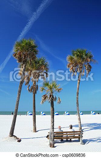 scène plage, paumes - csp0609836