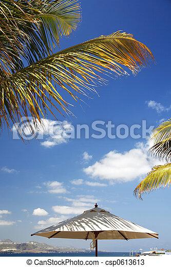 scène plage - csp0613613