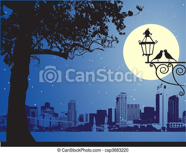 scène urbaine, idyllique, nuit - csp3683220