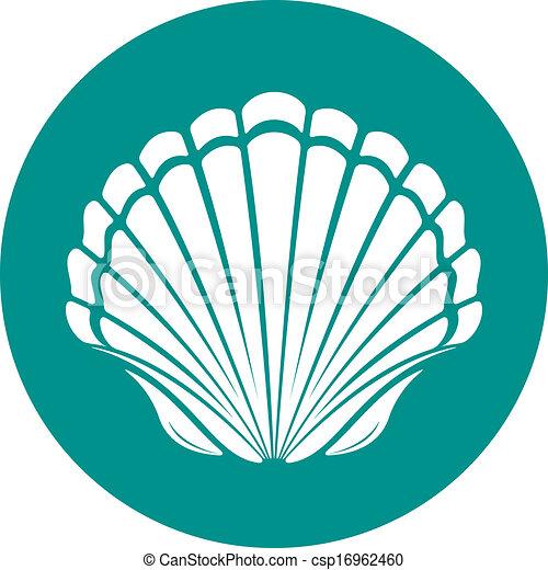 Scallop sea shell - csp16962460