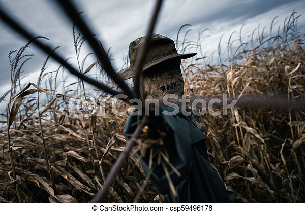 Scary Scarecrow In A Hat On A Cornfield In Cloudy Weather Halloween Holiday Background