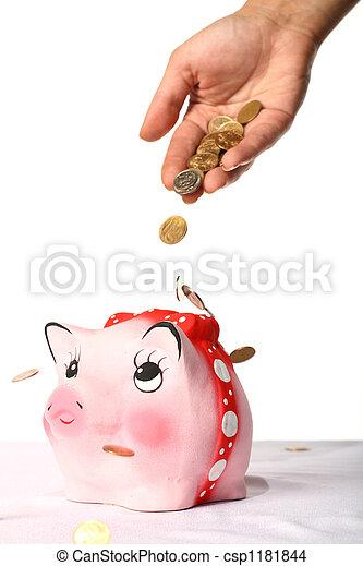 scatola, moneta - csp1181844