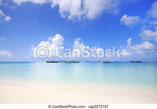scena spiaggia - csp3272197