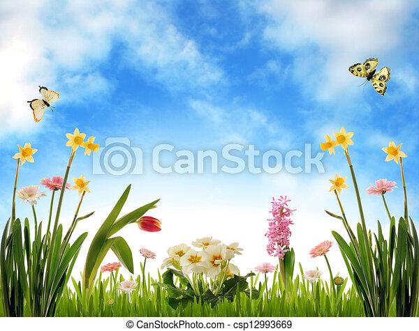 scenario, giardino - csp12993669