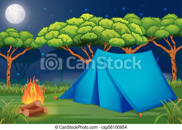 Scene Camping Out In The Woods At Night Illustration