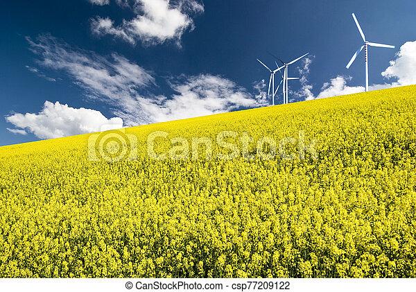 scene of nature and alternative energies - csp77209122