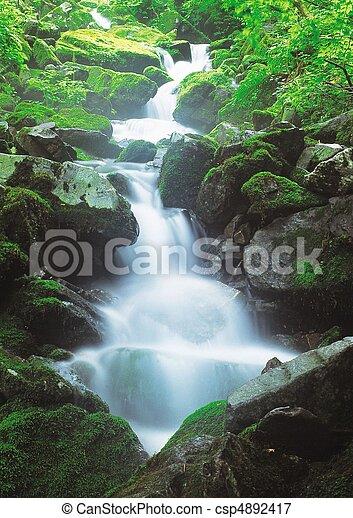 Scene of Nature - csp4892417