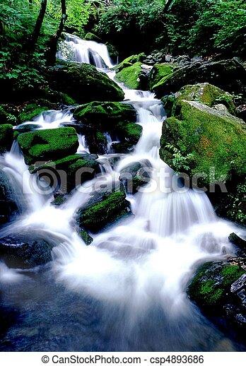 Scene of Nature - csp4893686