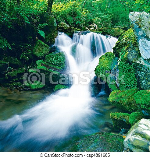 Scene of Nature - csp4891685