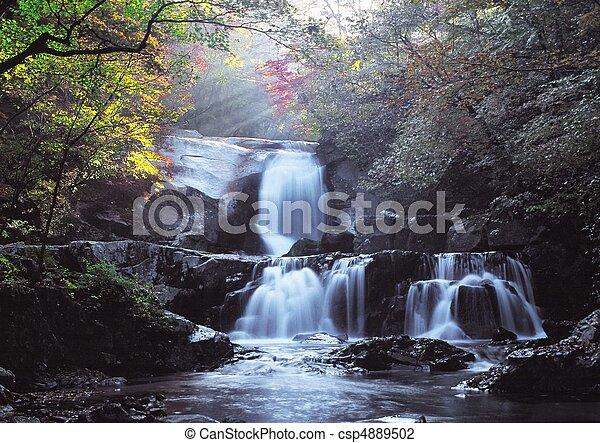Scene of Nature - csp4889502