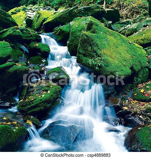 Scene of Nature - csp4889883