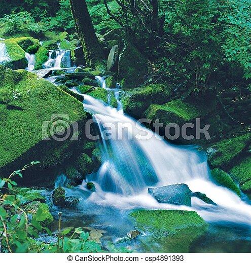 Scene of Nature - csp4891393