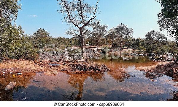 Scene of nature with stump tree. - csp66989664