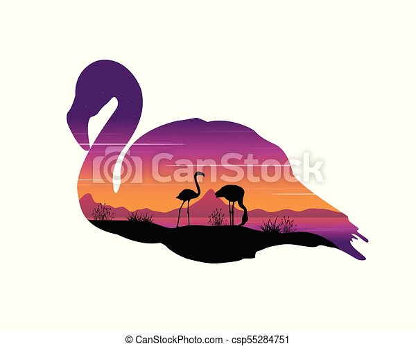 Scene with silhouette flamingo at sunset - csp55284751