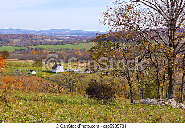 Scenic fields and forests under the blue sky. - csp59357311