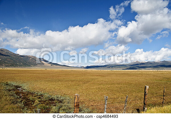 scenic forest green landscape with mountains - csp4684493