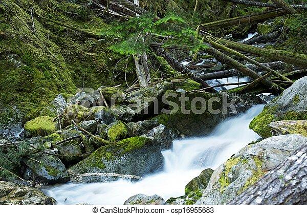 Scenic Montana Mossy Creek - csp16955683