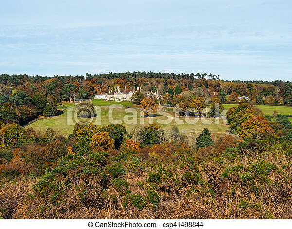 Scenic View of the Ashdown Forest in Sussex - csp41498844