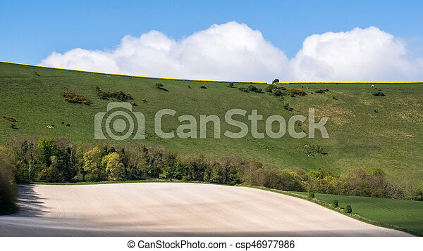 Scenic View of the Rolling Sussex Countryside - csp46977986