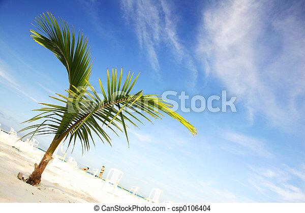 scenisk, strand - csp0106404