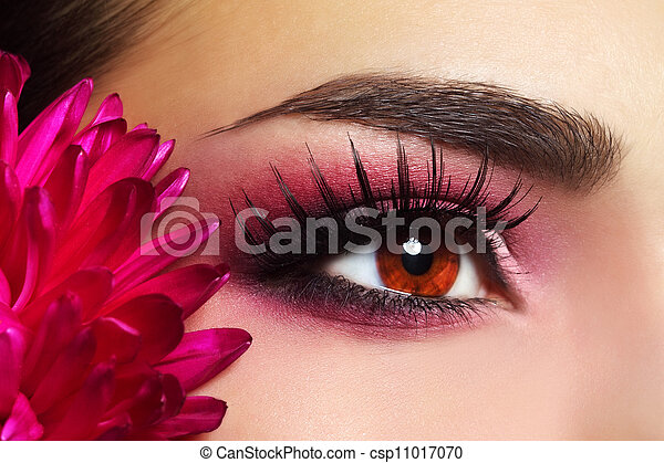 schöne , aster, blume, auge verfassung - csp11017070