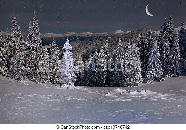 sch ne berge winter mond sternen nacht landschaftsbild. Black Bedroom Furniture Sets. Home Design Ideas