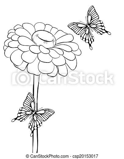 Schöne , butterflies., schwarzweiss, blume. Schöne , blume ...