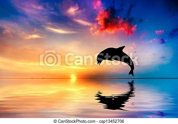 Schöne Delfin Bilder : sch ne delfin sonnenuntergang springende wasserlandschaft sch ne silhouette delfin ~ Frokenaadalensverden.com Haus und Dekorationen