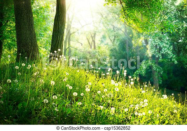 Frühling. Schöne Landschaft. Grünes Gras und Bäume - csp15362852