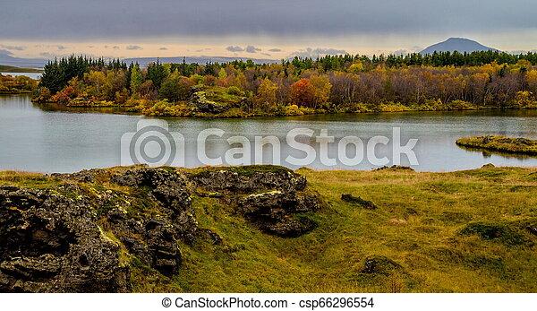 schöne , nördlich , bereich, island, see, myvatn - csp66296554