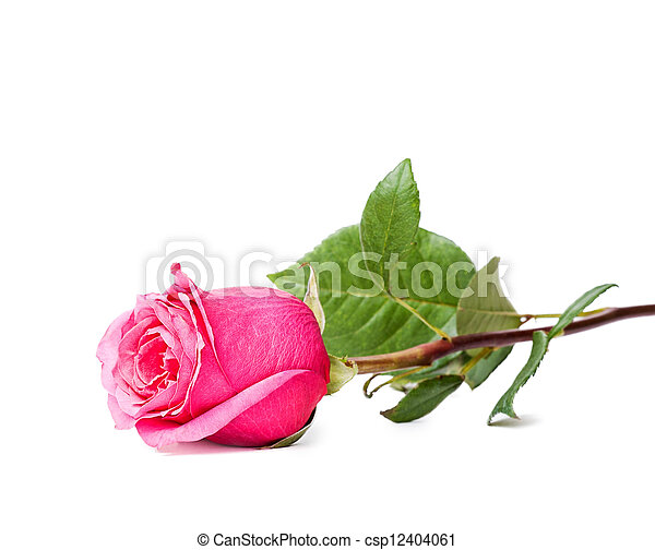 schöne , pink stieg - csp12404061