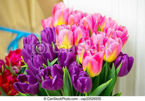 sch ne rosa tulips 8 valentines lila oder. Black Bedroom Furniture Sets. Home Design Ideas