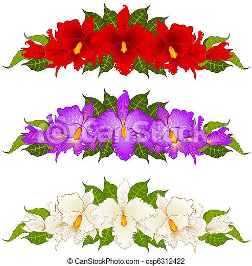 Schöne Sträuße Orchideen
