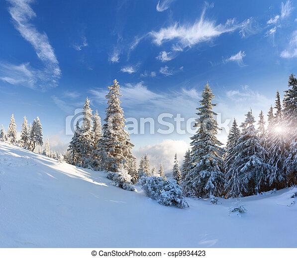 Sch ne winter schnee b ume bedeckt landschaftsbild - Winterliche bilder kostenlos ...