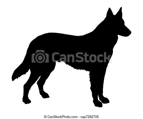 schafhirte, silhouette, hund, schwarz - csp7292705