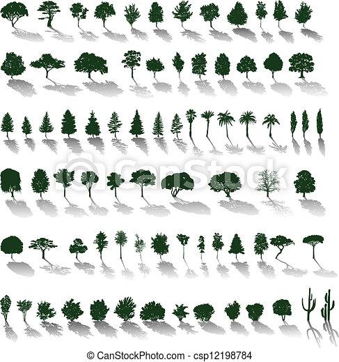 schatten, vektor, bäume - csp12198784