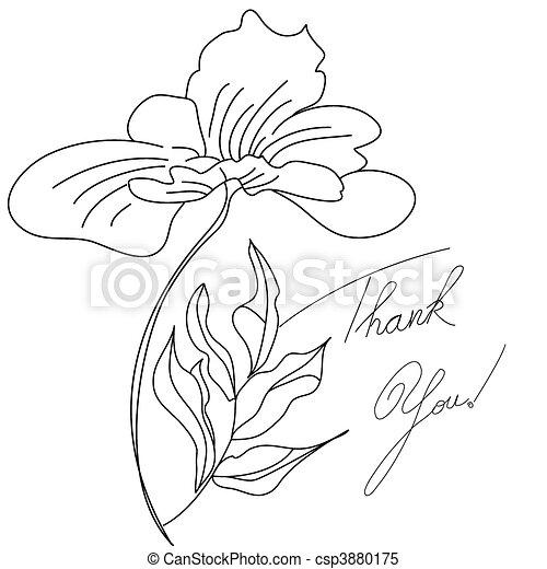 scheda, floreale - csp3880175
