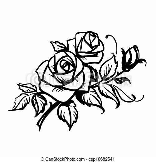 schets, roses., achtergrond, black , witte , tekening - csp16682541