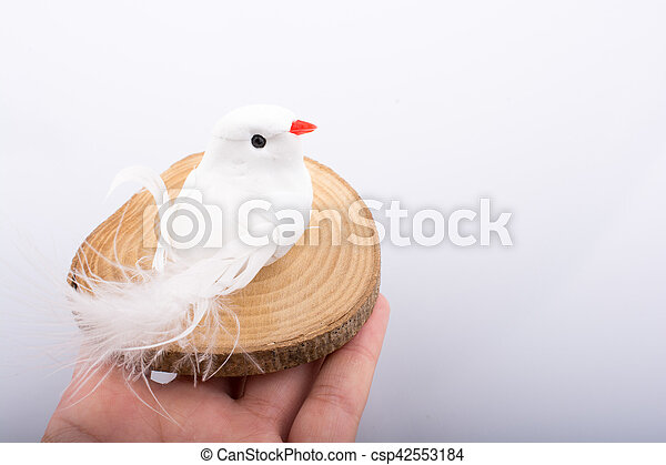 Vogel Holz schnitt holzstamm stücke vogel holz schlanke bilder