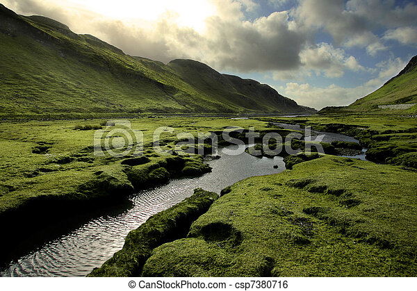 Grünes Schottlandtal im Frühling - csp7380716