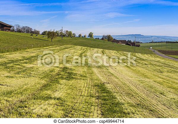 Tierhaltung in der Schweiz - csp49944714