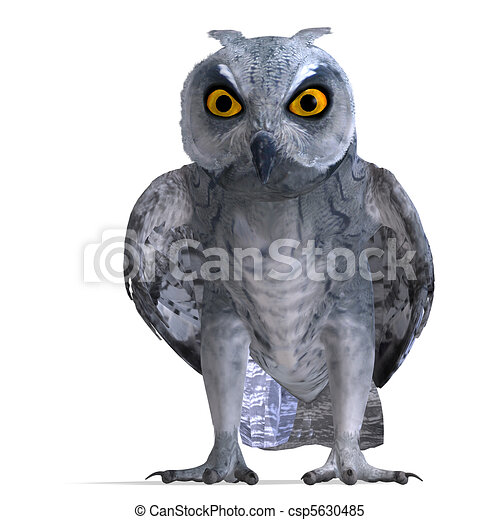 Scops owl bird. 3d rendering and shadow over white.